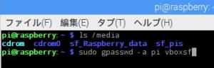 raspberry84a